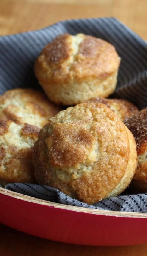 Weight Watchers Cinnamon Muffins