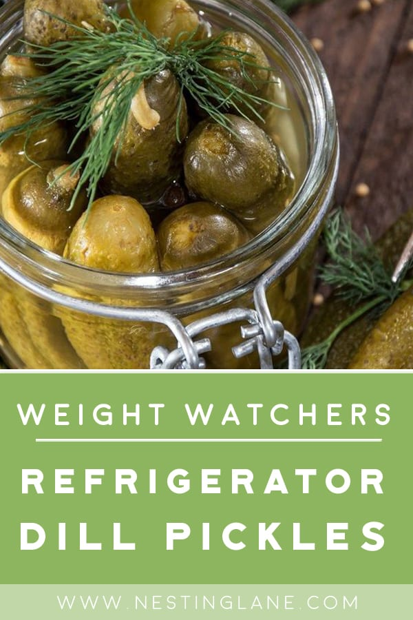 Weight Watchers Spicy Refrigerator Dill Pickles