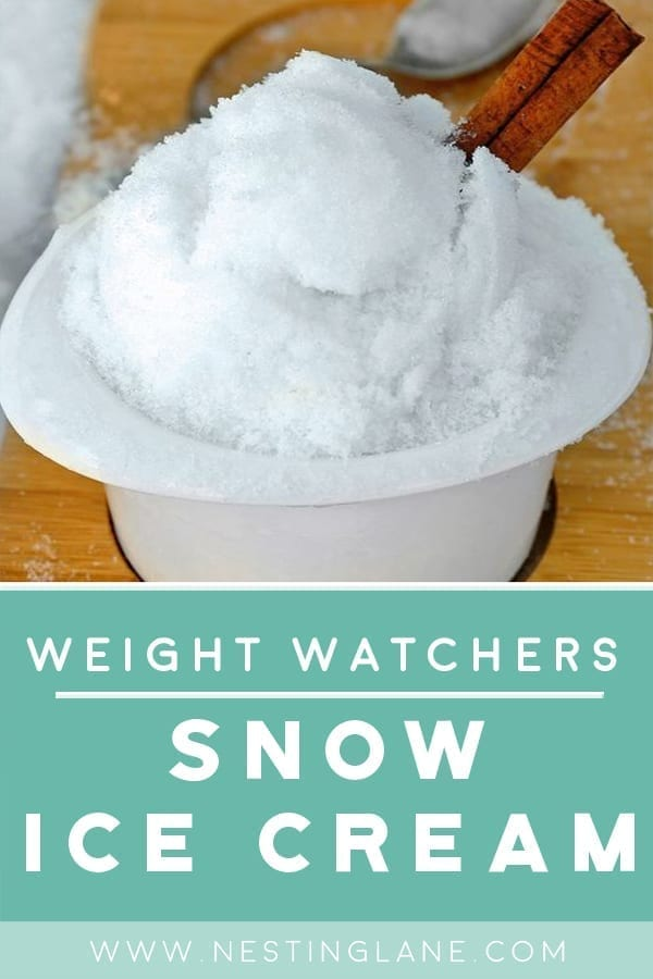 Snow Ice Cream with Weight Watchers Points